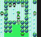 File:Yellow Pikachu tree Cooltrainer glitch.png