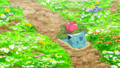 Aether Paradise Ivysaur.png