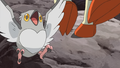 Pidove BW138.png