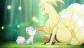 Lillie Vulpix and Kanto Ninetales.png