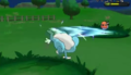 XY Prerelease Froakie Quick Attack.png