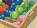 Berry Basket XY.png