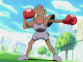 Invicible Pokemon Brothers Hitmonchan.png