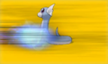 XY Prerelease Dratini attacked.png