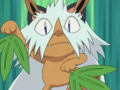 Meowth Shiftry.png