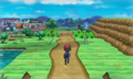XY Prerelease Route 3.png