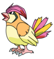 017Pidgeotto OS anime.png