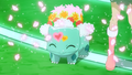 Shauna Bulbasaur Stage Clothing.png