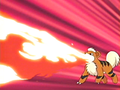 Morrison Growlithe Flamethrower.png