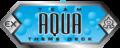 Team Aqua logo.png