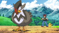 Ash and Staraptor.png