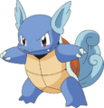 008Wartortle AG anime.png