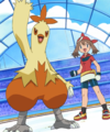 May and Combusken.png
