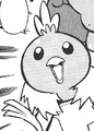 Birch Torchic PMRS.png