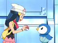Dawn choosing Piplup.png