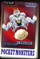 Bandai Machoke card.jpg