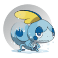 816Sobble 2.png