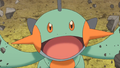 May Marshtomp ORAS Trailer.png