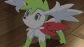 Mallow Shaymin Sky Forme.png