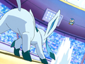 Piplup versus Glaceon.png