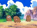 Fennel Valley Diglett.png