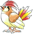 017Pidgeotto RG.png