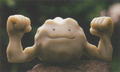 Ditto Geodude.png