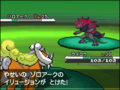 BW Prerelease Zoroark battle 2.png