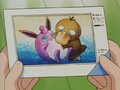 Pokémon in Love.png