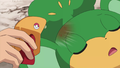 Cilan Super Potion.png