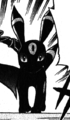 Wes Umbreon PCS.png