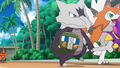 Marowak Friendly Side.png
