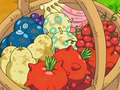 Berry Basket.png