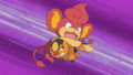 Ash Tepig Tackle.png