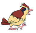 016Pidgey Channel.png