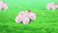 Aether Paradise Exeggcute.png
