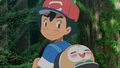 Ash and Rowlet.png