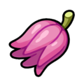 Curry Ingredient Kasib Berry Sprite.png