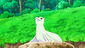 Dewgong anime.png