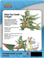 XY7 CollectorAlbum Sellsheet.png