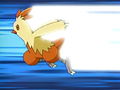 May Combusken Quick Attack.png