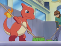 Jimmy Charmeleon.png