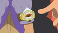 Hapu Z-Ring anime.png