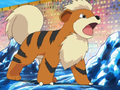 Morrison Growlithe.png