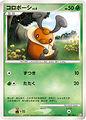 021501 P KOROBOSHI.jpg
