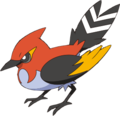 662Fletchinder XY anime 2.png