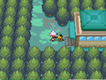 Ilex Forest entrance HGSS.png