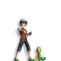 Masters Dream Team Maker Brendan and Treecko.png