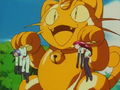Meowth of the Bouty Guard.png