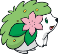 492Shaymin Land Forme Dream.png